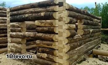 Сосновая древесина для бани
