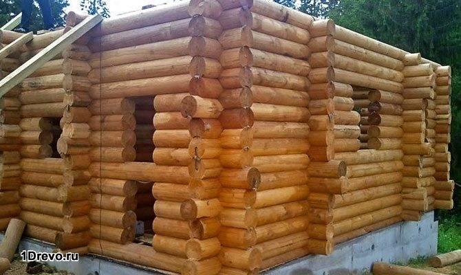 Строительство из лиственницы