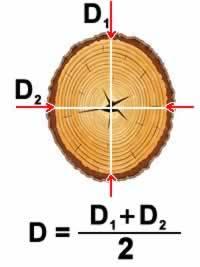 диаметр бревна