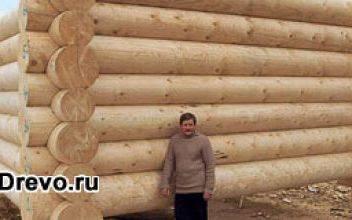 Рубка срубов для дома из бревна большого диаметра