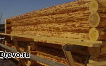 Особенности изготовления сруба из круглого леса
