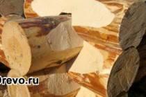 Канадская технология строительства сруба в специальную чашу