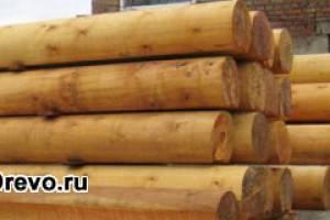 Срубы домов из кедра - преимущества перед другими породами