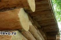 Торцы брёвен сруба: особенности обработки и защиты
