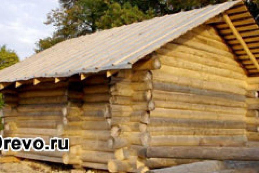 Баня из осины: плюсы и минусы. Этапы строительства бани из осины