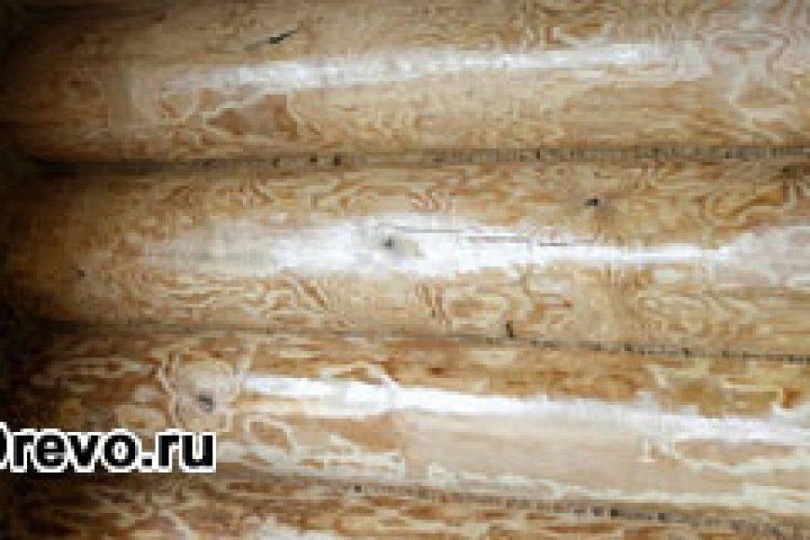 Чем обработать сруб после шлифовки