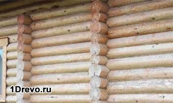 Стена из бревна