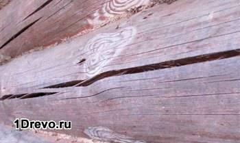 Высыхание древесины