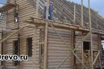 Постройка дома из сруба свежей рубки против старого сруба
