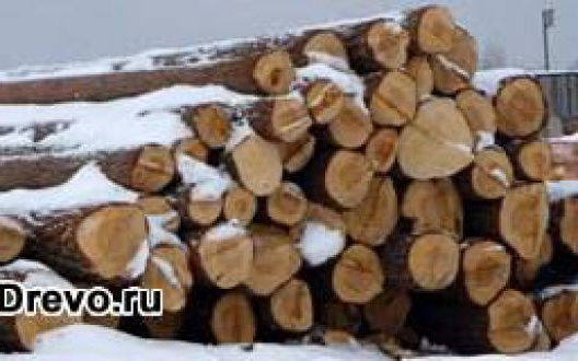 Как производится расчёт необходимых м³ леса для сруба