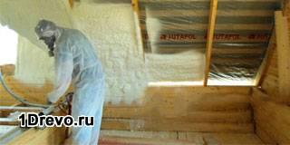 Защита дома от грызунов и насекомых