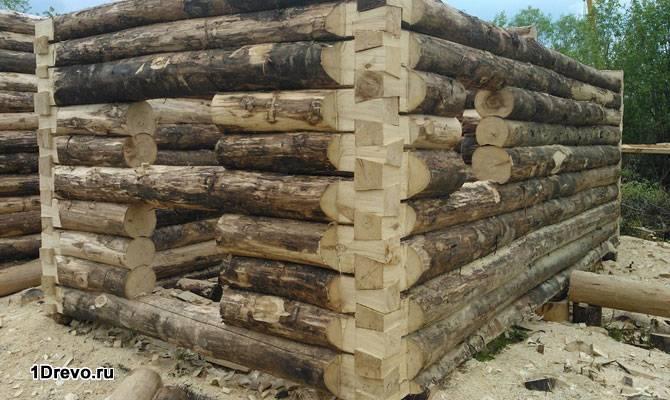 Строительство бани из осины