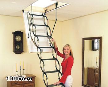 Металлическая лестница гармошка