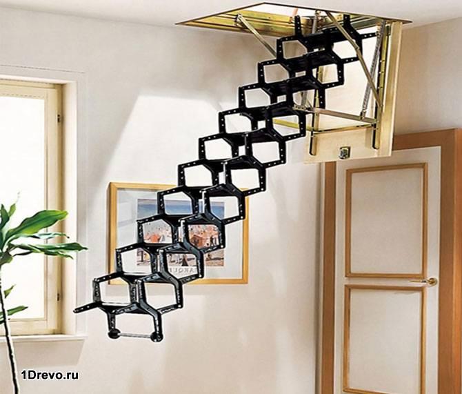 Лестница гармошка