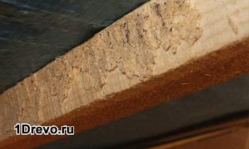 Зараженная древесина