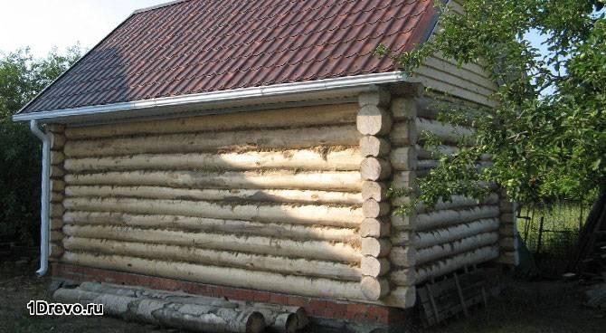 Баня из осины