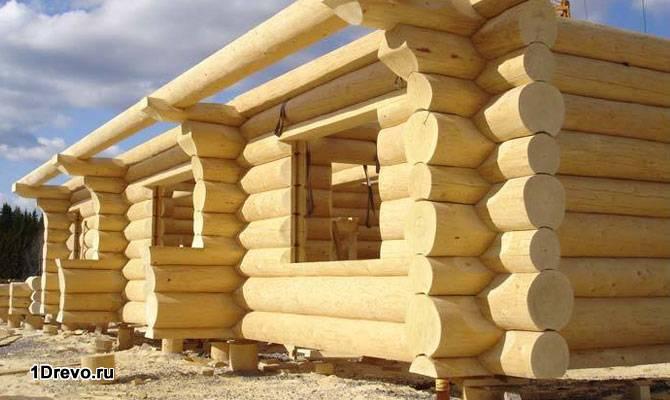 Строительство из бревна