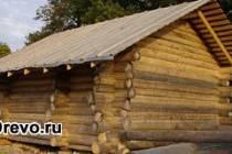 Баня из осины - преимущества осинового сруба