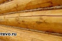 Тонкости конопатки бревенчатого дома своими руками