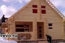 Из какого леса лучше строить дом - зимнего или летнего