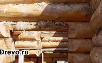 Усадка дома из бревенчатого сруба ручной рубки