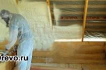 Защита деревянного дома от грызунов и насекомых