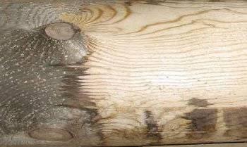 Шлифовка дерева