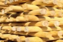 Деревянные дома из оцилиндрованного бревна - стоимость строительства