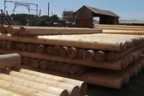 Сухое оцилиндрованное бревно для строительства дома
