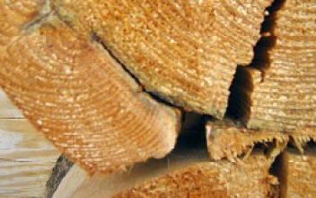 Чем заделать трещины в брёвнах сруба