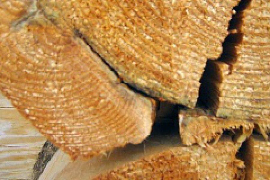 Чем заделать щели в бревнах сруба – приемы и материалы