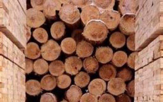 Выбор материала для строительства деревянного дома