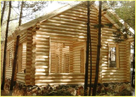 Особенности строительства домов с финским профилем