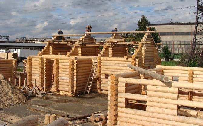 Строительство из карельской сосны
