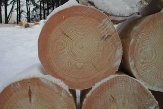 Строительство из зимнего леса
