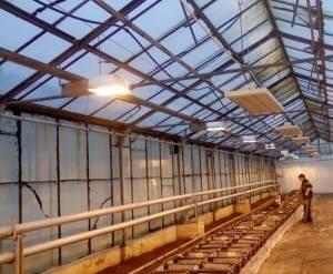 Установка инфракрасных обогревателей в теплице