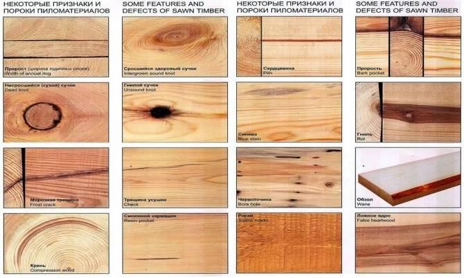 какие бывают пороки древесины